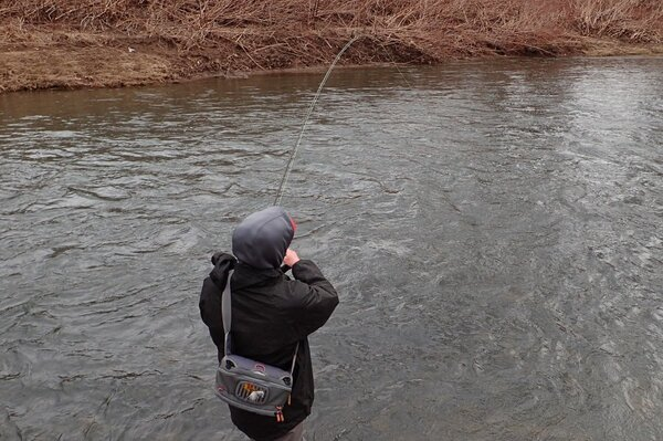 delaware river guided fly fishing trips (99)