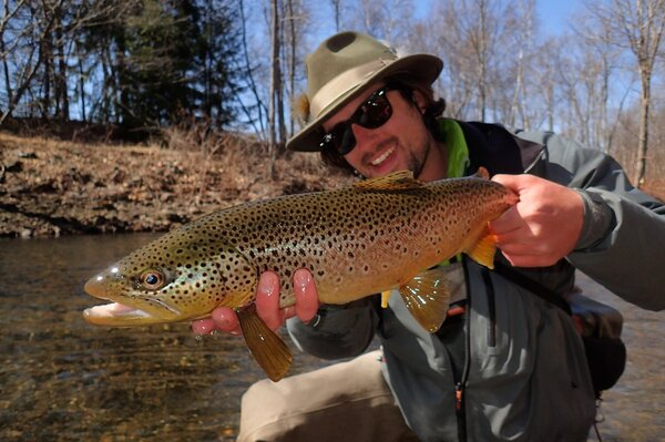 guided fly fishing for wild brown trout (109)