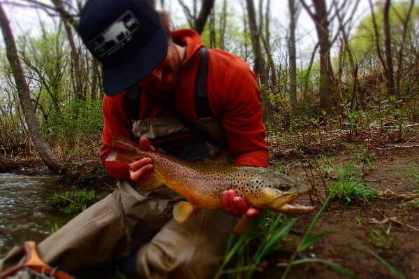 wild brown trout in the pocono mountains with jesse filingo of filingo fly fishing (338)