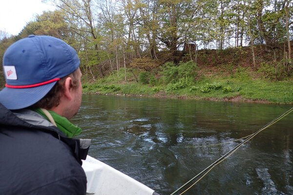 guided fly fishing the delaware river with filingo fly fishing for big brown trout (803)