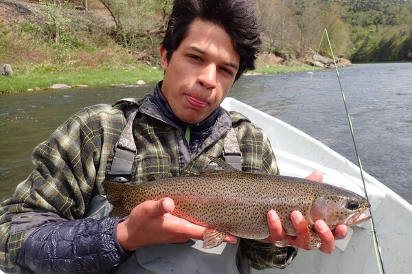 rainbow trout on the delaware river (144)