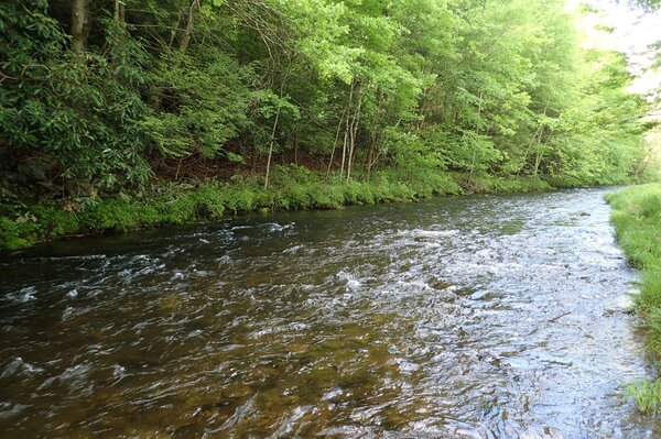 guided fly fishing pocono mountains Pennsylvania and upper delaware river new york filingo fly fishing (1116)