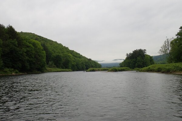 west branch delaware river big brown trout guided fly fishing tours jesse filingo  (1126)