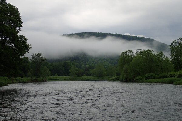 fly fishing the upper delaware river with jesse filingo of filingo fly fishing (567)