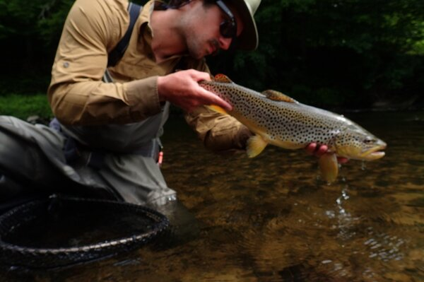 fly fishing the pocono mountains with guide jesse filingo (816)