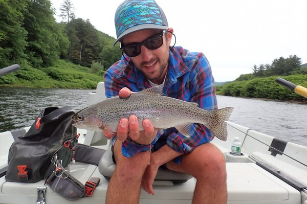 upper delaware river fly fishing for wild brown trout (571)