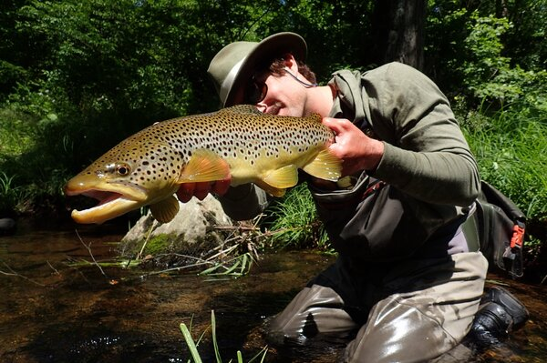 pocono mountains guided fly fishing tours (875)