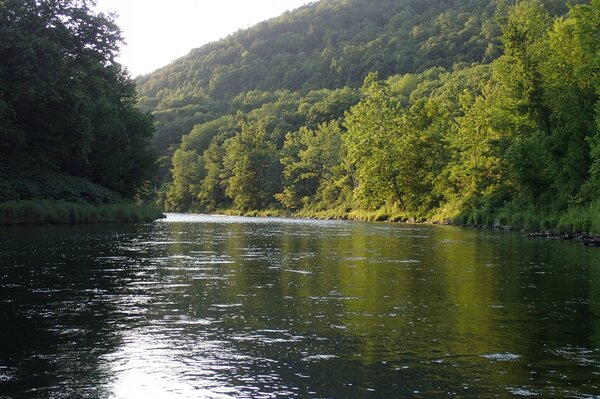 fly fishing the upper delaware river for wild trout with jesse filingo of filingo fly fishing (596)