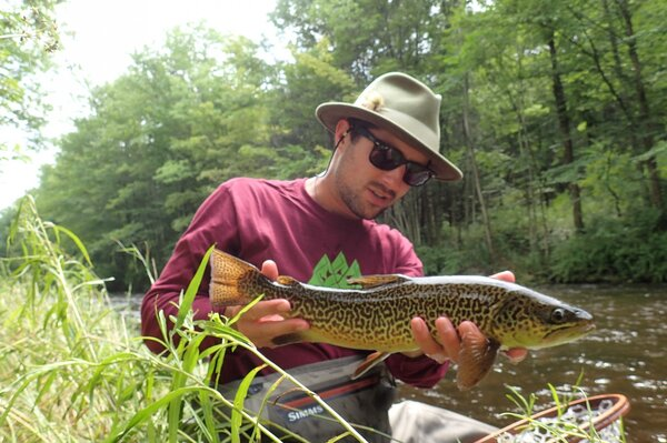 fly fishing the pocono mountains for wild brown and rainbow trout with jesse filingo of filingo fly fishing (601)