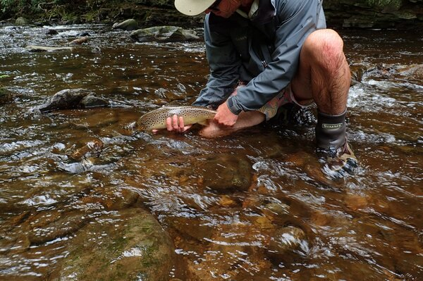 guided fly fishing the pocono mountains (205)