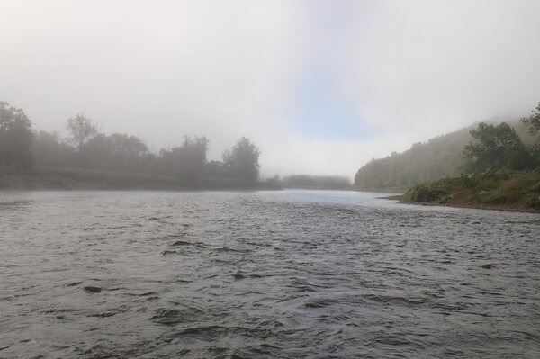 guided fly fishing on the delaware river for trout with jesse filingo of filingo fly fishing (966)