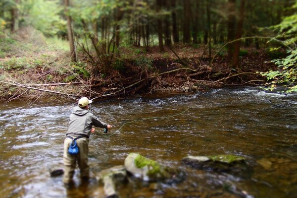 pocono mountains guided fly fishing tours for brook and brown trout with filingo fly fishing (648)