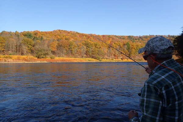guided fly fishing tours on the delaware river for big trout with jesse filingo of filingo fly fishing (1003)