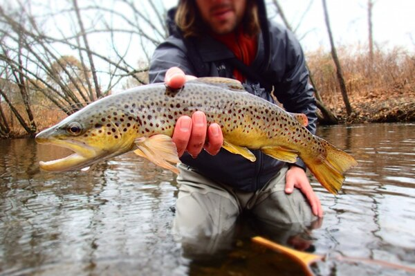 guided fly fishing tours in the pocono mountains with jesse filingo of filingo fly fishing (446)