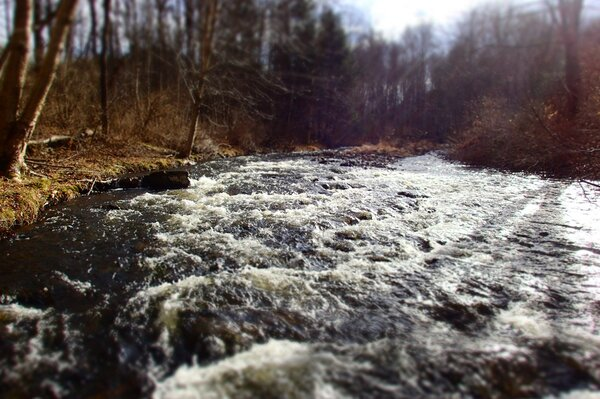 pocono mountains pennsylvania guided fly fishing trips with jesse filingo of filingo fly fishing (1027)