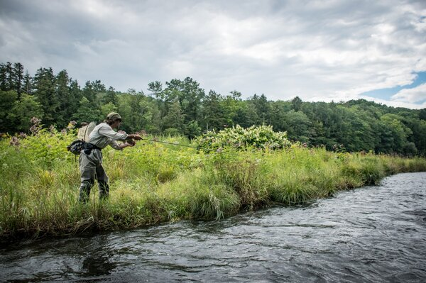 west branch delaware river fly fishing guide (270)