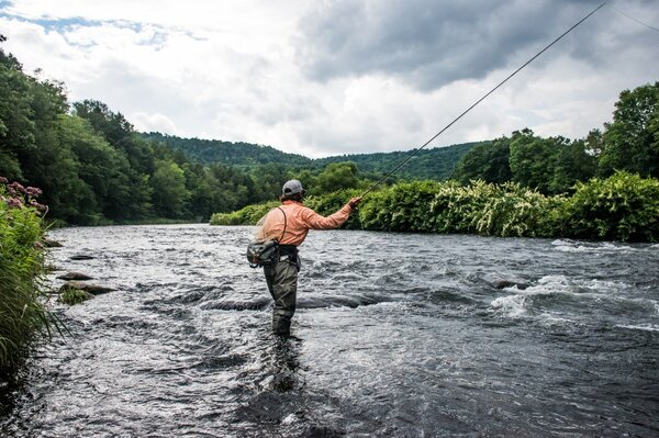 west branch delaware river fly fishing guide (273)