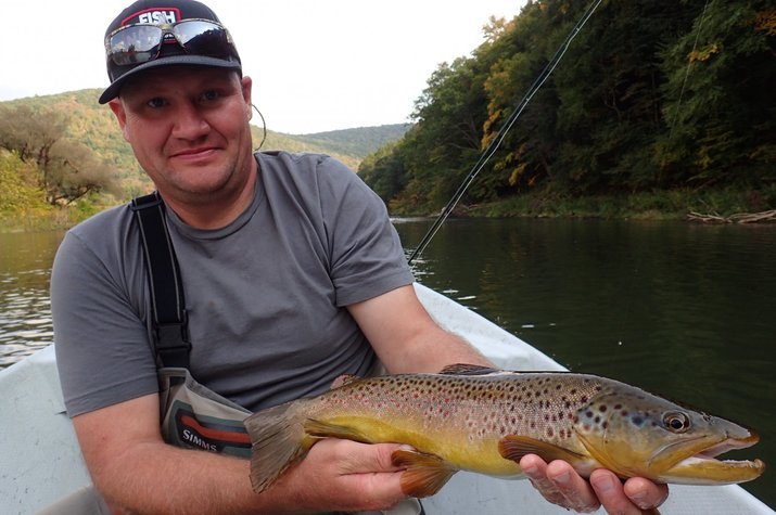 guided fly fishing west branch delaware river new york and pennsylvania big brown trout filingo fly fishing