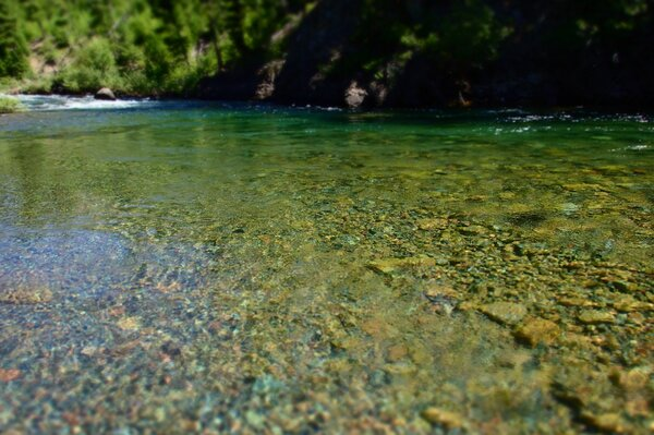 montana fly fishing with jesse filingo of filingo fly fishing for wild brown trout (390)
