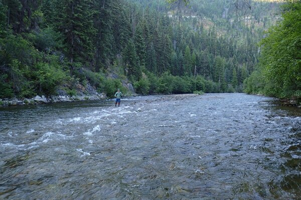 fly fishing in montana with jesse filingo of filingo fly fishing (400)