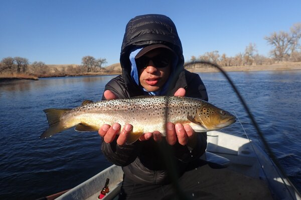 guided fly fishing west branch delaware river upper delaware river new york filingo fly fishing (1296)